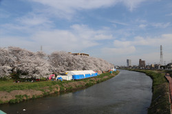 Motoarakawa176